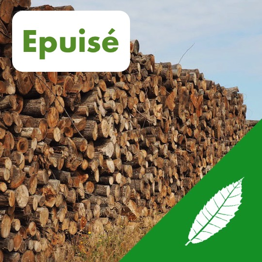 Alliance Bois de Chauffage - Châtaignier - pile - Logo - Epuisé