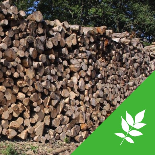 Fr ne longueur 2m alliance bois de chauffage - Frene bois de chauffage ...