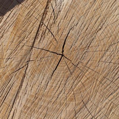 Bois de chauffage fagot ch ne longueur 1m alliance bois de chauffage - Frene bois de chauffage ...