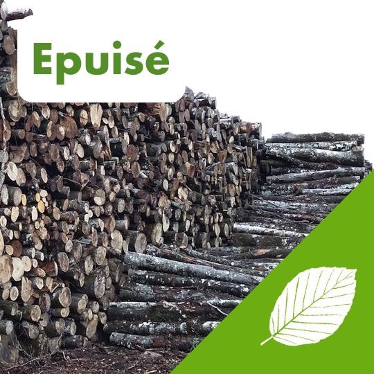 Alliance Bois de Chauffage - Hêtre - pile - Logo - Epuisé