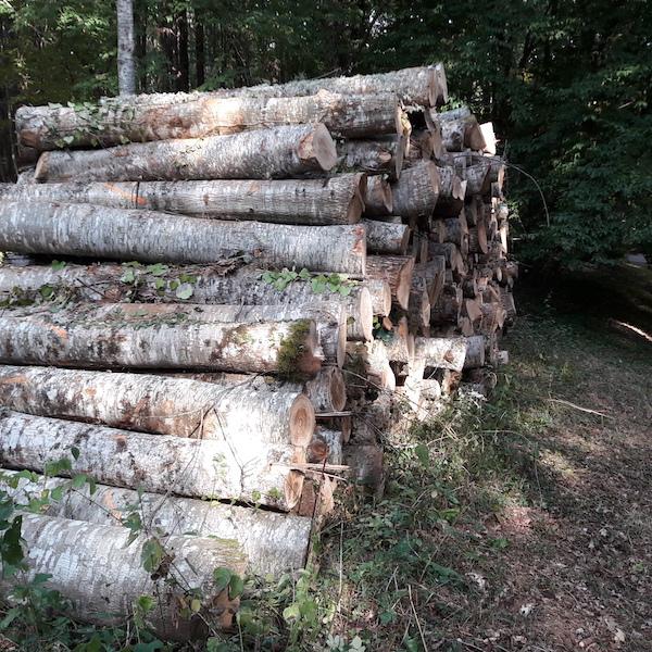Bois de chauffage u2013 Ch u00eane Rouge u2013 longueur 2m Alliance Bois de Chauf # Bricoman Bois De Chauffage